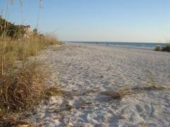 Clearwater's beach.
